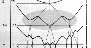 L'Histoire de la brisure des répliques en physique / The History of Replica Symmetry Breaking in Physics